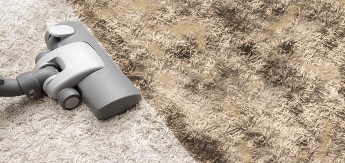 ea20267300762 Tapetes em casa  Confira 5 dicas para evitar o acúmulo de ácaros e poeira