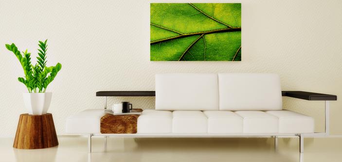 Admirare-EcoDesign-entenda-melhor-sobre-o-conceito-para-aplicar-em-sua-casa
